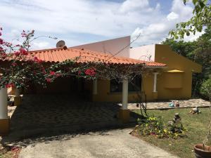 Casa En Ventaen Chame, Sora, Panama, PA RAH: 18-6854