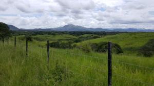 Terreno En Ventaen Penonome, El Coco, Panama, PA RAH: 18-6906
