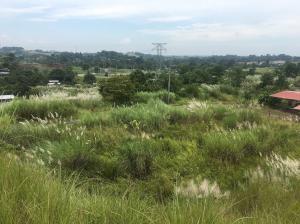 Terreno En Ventaen Panama, Tocumen, Panama, PA RAH: 18-7064
