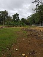 Terreno En Ventaen Chilibre, Buenos Aires, Panama, PA RAH: 18-7290