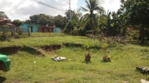 Terreno En Ventaen La Chorrera, Chorrera, Panama, PA RAH: 18-7328