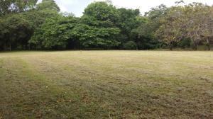 Terreno En Ventaen San Carlos, San Carlos, Panama, PA RAH: 18-7414