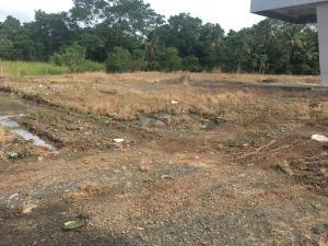 Terreno En Ventaen La Chorrera, Chorrera, Panama, PA RAH: 18-8009