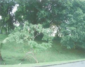 Terreno En Ventaen Panama, La Boca, Panama, PA RAH: 18-8279