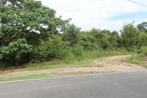 Terreno En Ventaen Cocle, Cocle, Panama, PA RAH: 18-8350
