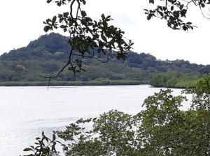 Terreno En Ventaen David, David, Panama, PA RAH: 18-8607