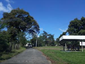 Terreno En Ventaen David, David, Panama, PA RAH: 18-8430
