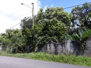 Terreno En Ventaen Baru, Baco, Panama, PA RAH: 18-8429