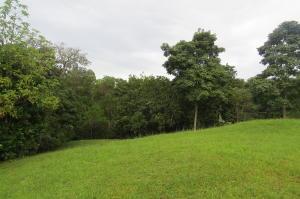 Terreno En Ventaen Panama, Las Cumbres, Panama, PA RAH: 18-8378