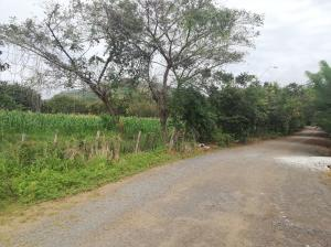 Terreno En Ventaen Cocle, Cocle, Panama, PA RAH: 18-8454