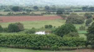 Terreno En Alquileren Las Tablas, Las Tablas, Panama, PA RAH: 18-8778