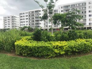 Apartamento En Alquileren Panama, Panama Pacifico, Panama, PA RAH: 19-84