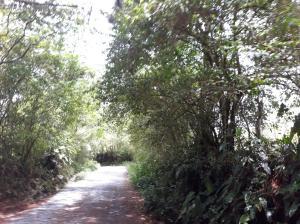 Terreno En Ventaen Remedios, Remedio, Panama, PA RAH: 19-471