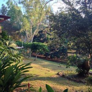 Terreno En Ventaen Panama Oeste, Arraijan, Panama, PA RAH: 19-1463