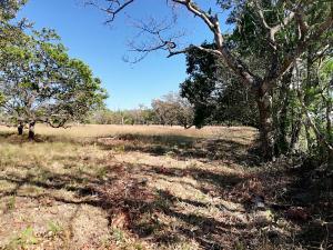 Terreno En Ventaen Boquete, Boquete, Panama, PA RAH: 19-1542