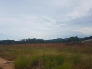 Terreno En Ventaen Panama, Tocumen, Panama, PA RAH: 19-1551