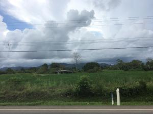 Terreno En Ventaen Darien, Darien, Panama, PA RAH: 19-1990