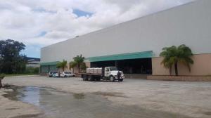 Galera En Alquileren Panama, Tocumen, Panama, PA RAH: 19-2077