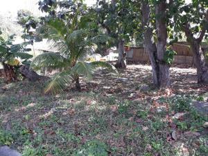 Terreno En Ventaen Panama, Rio Abajo, Panama, PA RAH: 19-2567