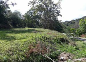 Terreno En Ventaen Panama Oeste, Capira, Panama, PA RAH: 19-2380