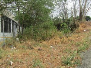 Terreno En Ventaen Panama, Ricardo J Alfaro, Panama, PA RAH: 19-2576