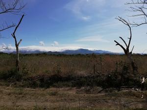 Terreno En Ventaen Dolega, Dolega, Panama, PA RAH: 19-2761