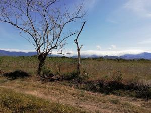 Terreno En Alquileren Dolega, Dolega, Panama, PA RAH: 19-2773