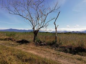 Terreno En Ventaen Dolega, Dolega, Panama, PA RAH: 19-2775