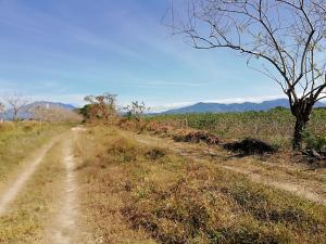 Terreno En Ventaen Dolega, Dolega, Panama, PA RAH: 19-2803