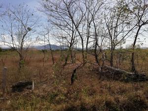 Terreno En Ventaen Dolega, Dolega, Panama, PA RAH: 19-2814