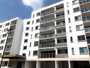Apartamento En Alquileren Panama, Panama Pacifico, Panama, PA RAH: 19-3036