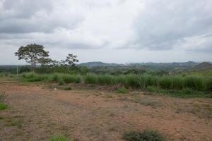 Terreno En Ventaen Panama, Panama Norte, Panama, PA RAH: 19-3090