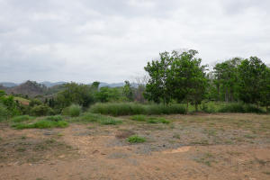 Terreno En Ventaen Panama, Panama Norte, Panama, PA RAH: 19-3092