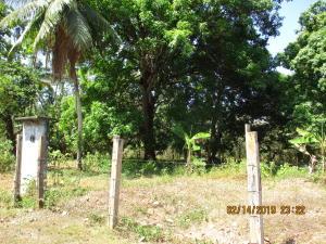 Terreno En Ventaen San Felix, Lajas Adentro, Panama, PA RAH: 19-3148
