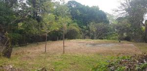 Terreno En Ventaen Panama, Las Cumbres, Panama, PA RAH: 19-3311
