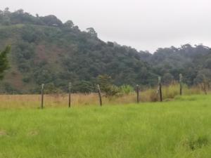 Terreno En Ventaen Tierras Altas, Volcan, Panama, PA RAH: 19-3875