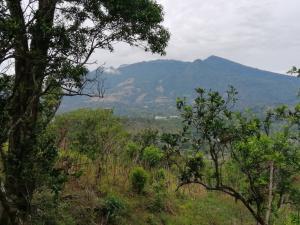 Terreno En Ventaen Boquete, Jaramillo, Panama, PA RAH: 19-3884