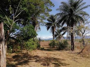 Terreno En Ventaen Dolega, Dolega, Panama, PA RAH: 19-3978