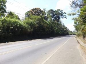 Terreno En Ventaen Panama, Transistmica, Panama, PA RAH: 19-4025