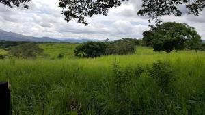 Terreno En Alquileren Chilibre, Buenos Aires, Panama, PA RAH: 19-4046