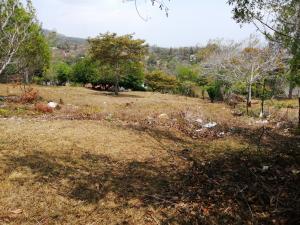 Terreno En Ventaen Capira, Campana, Panama, PA RAH: 19-4243