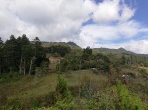 Terreno En Ventaen Boquete, Jaramillo, Panama, PA RAH: 19-4485