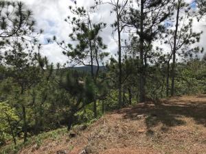 Terreno En Alquileren Pacora, Cerro Azul, Panama, PA RAH: 19-5227
