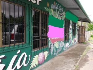 Negocio En Ventaen Boquete, Palmira, Panama, PA RAH: 19-5453