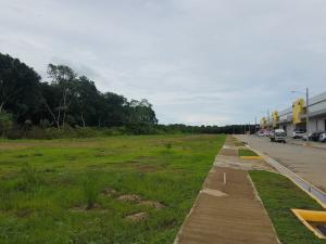 Terreno En Ventaen Panama, Tocumen, Panama, PA RAH: 19-5679