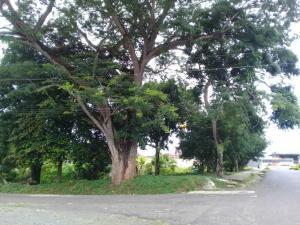 Terreno En Ventaen Panama, Juan Diaz, Panama, PA RAH: 19-5799