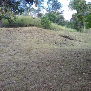 Terreno En Ventaen Panama Oeste, Arraijan, Panama, PA RAH: 19-6020