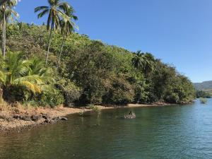 Terreno En Ventaen Tole, Quebrada De Piedra, Panama, PA RAH: 19-6117