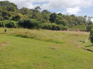 Terreno En Ventaen Panama, Howard, Panama, PA RAH: 19-6186