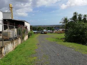 Terreno En Alquileren Panama, Tocumen, Panama, PA RAH: 19-6199